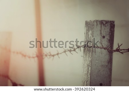Barbed wire fence, process vintage tone - stock photo