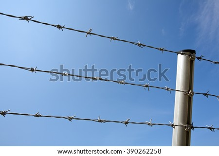 barbed wire lines