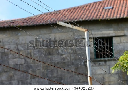 barbed wire of prison fence close-up