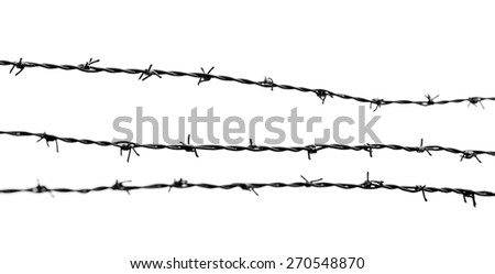 Barbed Wire on a white background - stock photo