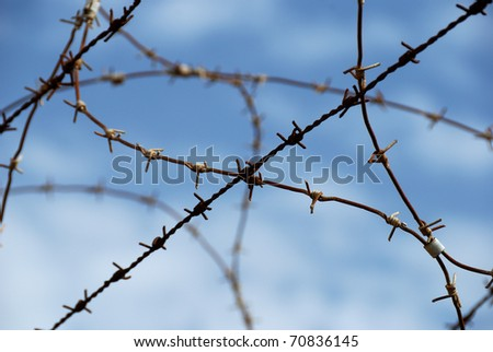 Barbed wire on blue sky background as concept of limited freedom - stock photo