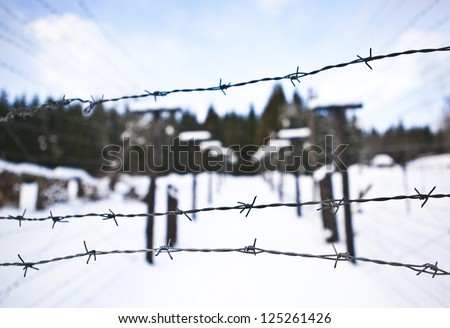 Barbed Wire Remains Iron Curtain On Stock Photo 125261426 - Shutterstock