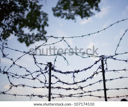 Barbed wire, Stockholm, Sweden. - stock photo