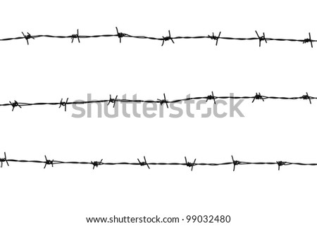 Barbed wires isolated on white background - stock photo