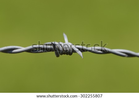barbwire in front of green meadow