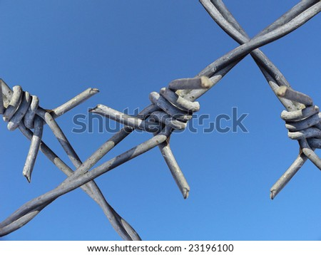 Barbwire with blue sky as background - stock photo
