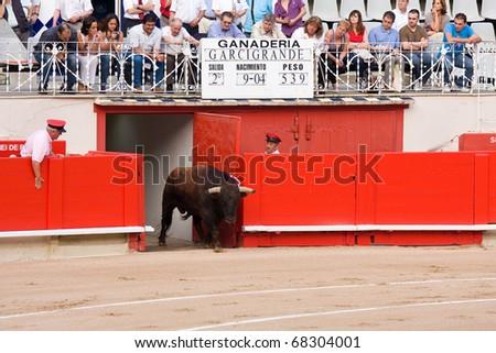 "BARCELONA - JUNE 6: ""Corrida"" (bullfighting) of bulls, typical Spanish tradition where a torero (bullfighter) kills a bull. June 6, 2010 in Barcelona (Spain). - stock photo"