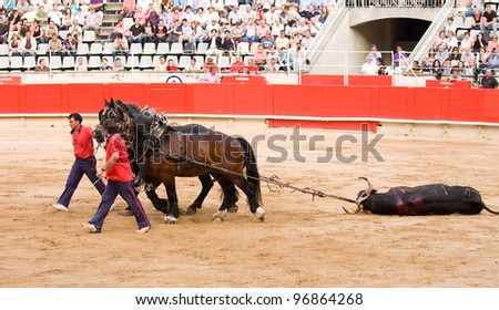 BARCELONA - JUNE 6: Some unidentified people works during a corrida de toros or bullfight, typical Spanish tradition where a torero or bullfighter kills a bull on June 6, 2010 in Barcelona, Spain. - stock photo