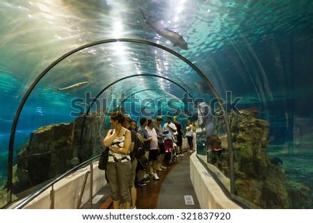 BARCELONA, SPAIN - AUGUST 16: Aquarium in Barcelona on August 16, 2011 in Barcelona, Spain - stock photo