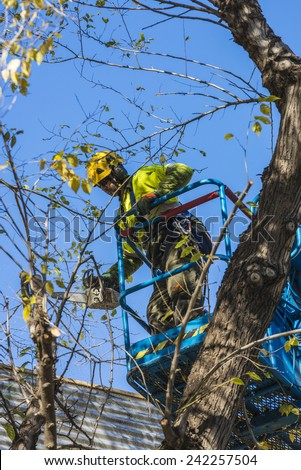 Barcelona, Spain - December 19, 2014: A maintenance worker parks and gardens pruning the branches of a tree with a chain saw to a raised platform in the old town of Barcelona - stock photo