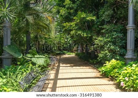 BARCELONA, SPAIN - JULY 01. Inside the tropical greenhouse Umbracle. It is a wood brick construction for tropical plants in the Citadel Park Barcelona on July 01, 2015. The Parc de la Ciutadella  - stock photo