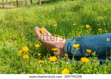 Bare feet male, resting among the dandelions in the meadow, in sunny spring day. Legs with dandelions between the fingers, close-up. - stock photo