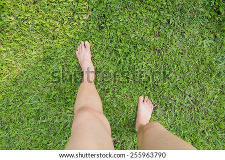 Bare female feet on the green grass