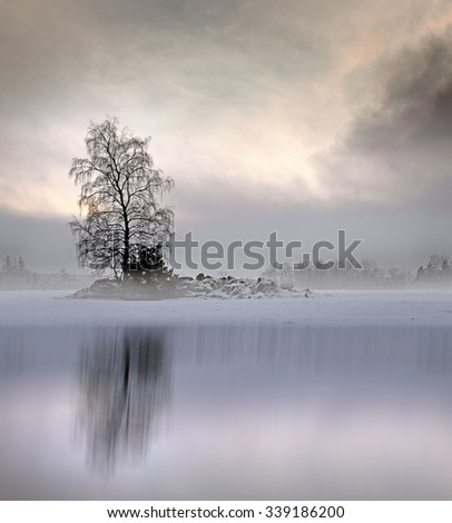 Bare tree in foggy landscape with moody sky, reflected in shiny ice of lake  - stock photo