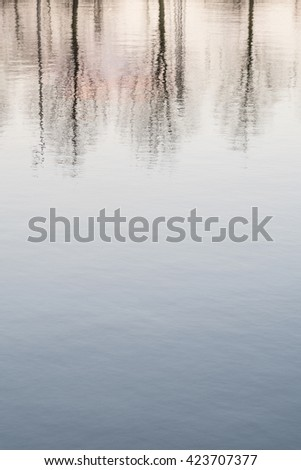 Bare trees at sunset, reflected in water