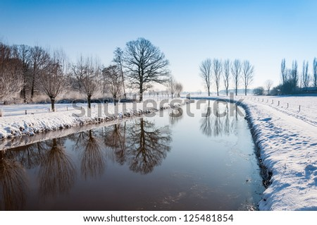 Bare trees reflected in the mirror smooth water surface in a snowy landscape.