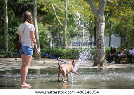 Barefoot girl with a dog near the fountain in the park, view from the back. Focus on the dog