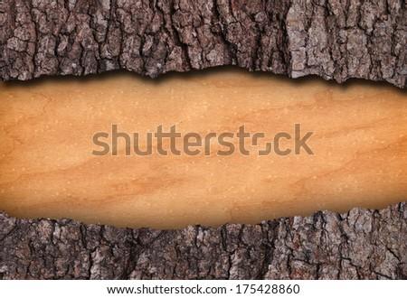 Bark and bare wood frame - stock photo