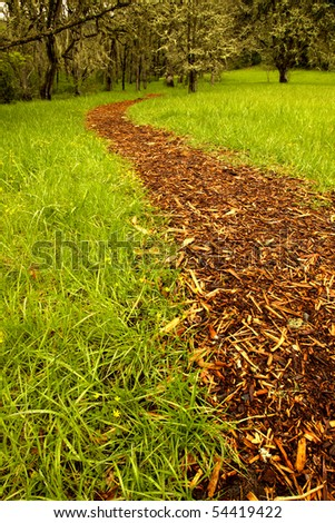 Bark path from a grass field leading to a grove of trees. Shallow depth of field, focus at immediate foreground.