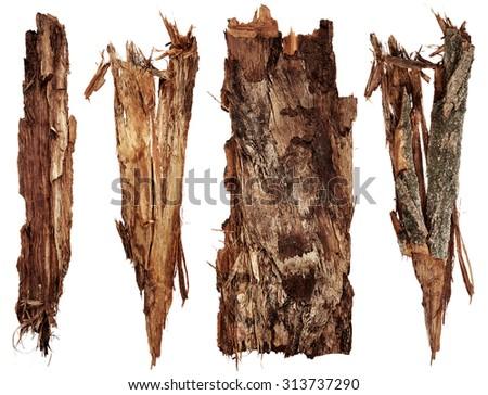 Bark tree set isolated on white background - stock photo