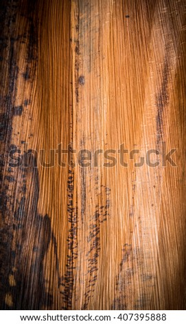bark tree texture background - stock photo