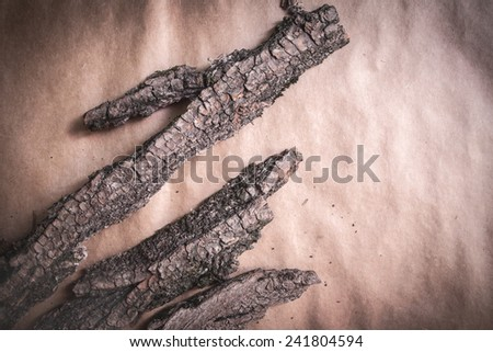 bark wood tree dry arid dried part rough coarse paper