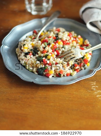 Barley with fresh chopped red, yellow pepper, eggplant, zucchini, onion, mint leaves in a plate - stock photo