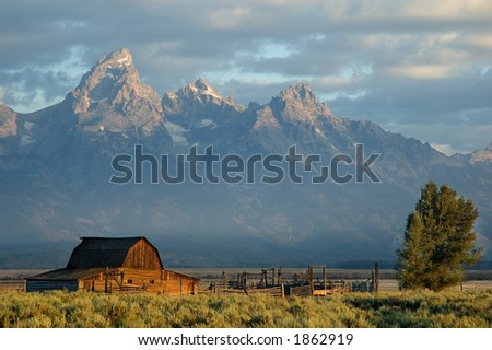 Barn in the Grand Teton National park - stock photo