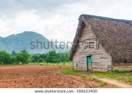 Barn used for curing tobacco at the Vinales valley in Cuba - stock photo