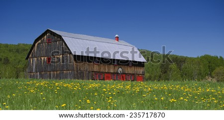 Barn with Flowers and Red windows