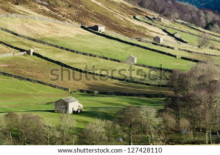 Barns and walls in Swaledale, Yorkshire Dales, UK - stock photo