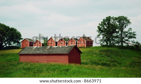 barns on the farm