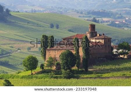 Barolo Castello di La Volta  - stock photo