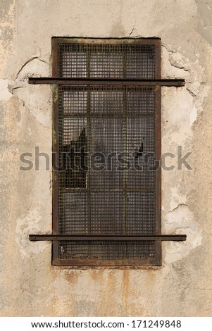 barred window - stock photo