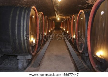 Barrels in a wine cellar - stock photo