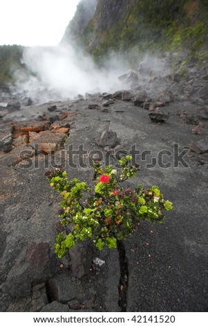 Barren bottom of Kilauea Crater with sulfur gases in Hawaii Volcanoes National Park - stock photo