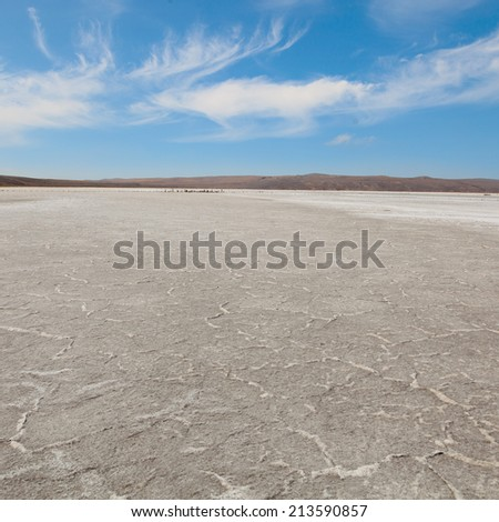 Barren landscape photographed in the afternoon