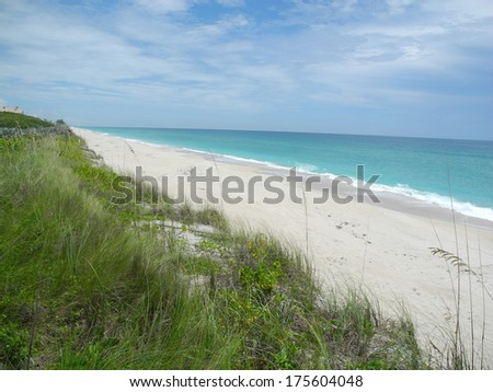 Barrier Island Sanctuary Florida - stock photo