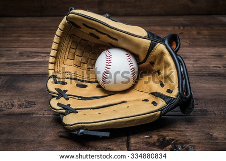 Baseball glove with the hand