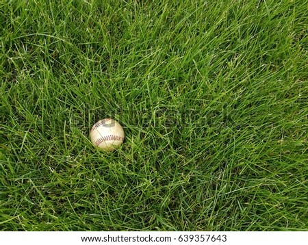 baseball in thick green grass