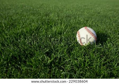 Baseball on grass - stock photo