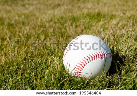 Baseball on the lawn