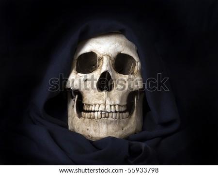Basic human skull photographed indoors. - stock photo
