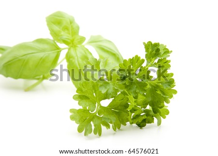 Basil and parsley