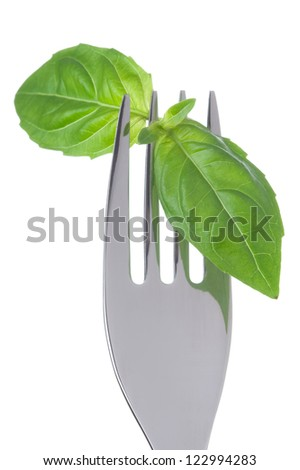 basil herb leaves on a fork against white background