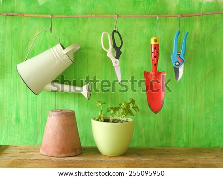 Basil in a flower pot with gardening tools, gardening concept - stock photo