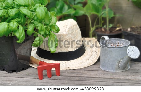 basil in pot, straw hat and little gardening accessories on wooden plank - stock photo