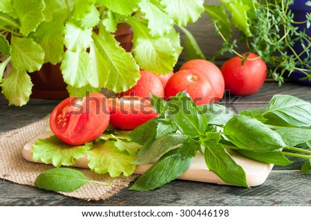 Basil leaves, fresh lettuce, tomatoes and thyme on a wooden table. Rustic style. Selective focus - stock photo