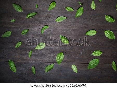 Basil leaves on an old black wooden background.Top view - stock photo