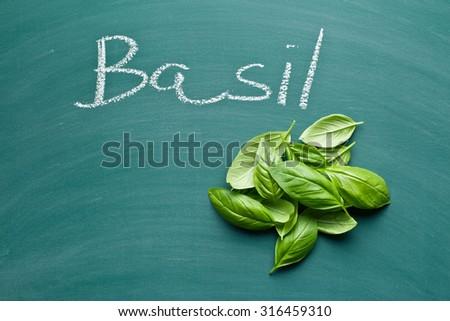 basil leaves on green chalkboard - stock photo